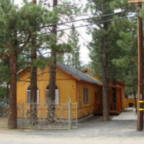 Deer to us cabin in Bear City, Big Bear Lake California
